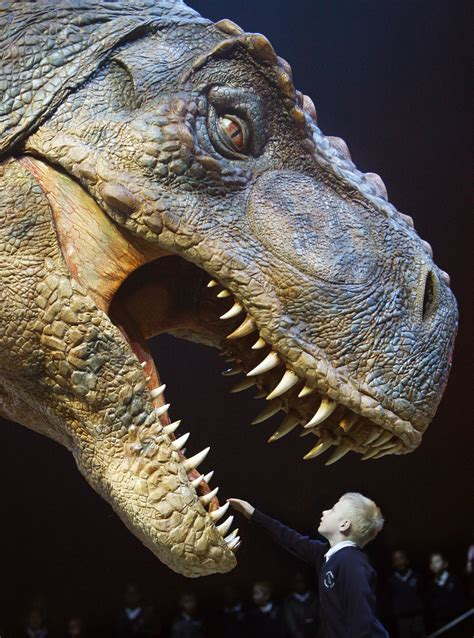T-Rex burger now extinct from Canadian Wendy's - TODAY