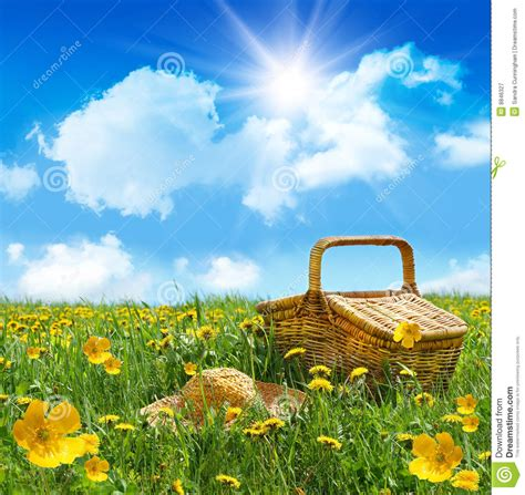 Summer Picnic Basket With Straw Hat In A Field Stock Image